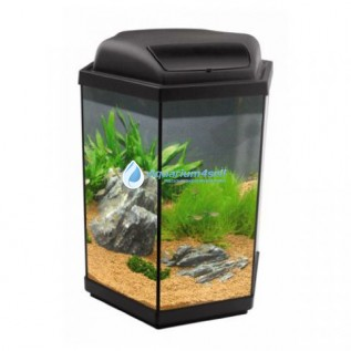 Высокий аквариум.