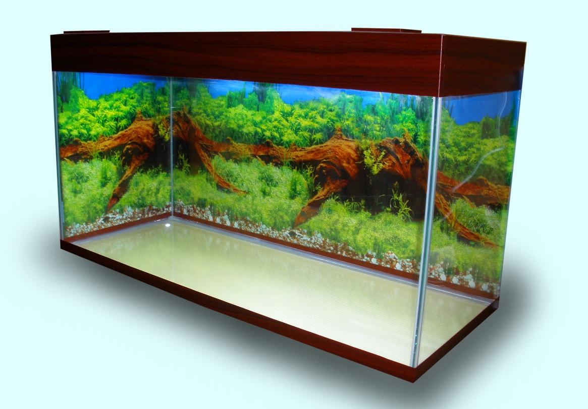 Большой аквариум.
